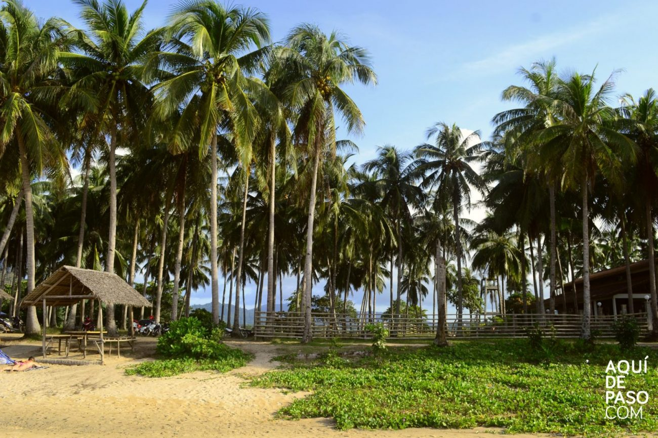 Nacpam Beach - Playas de Asia